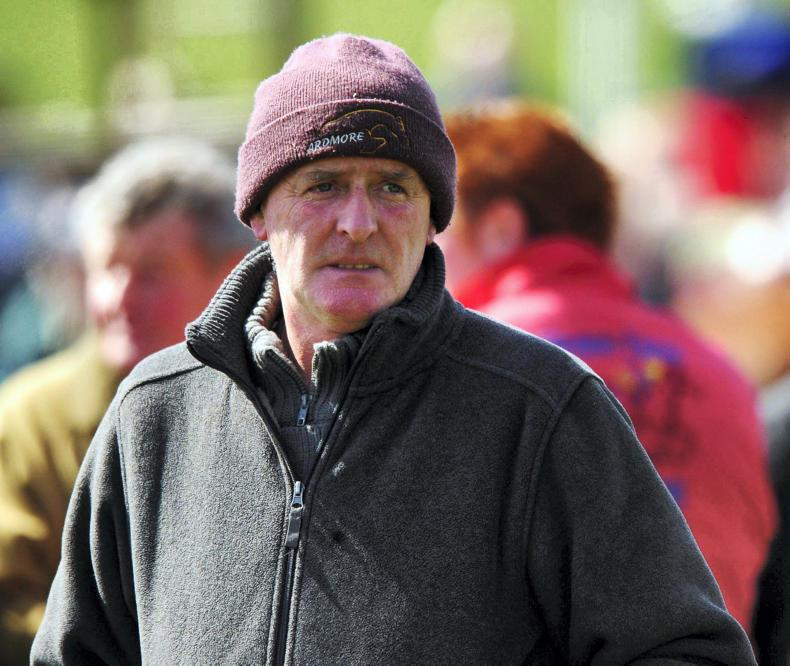 POINT-TO-POINT: Elmdale shows huge promise