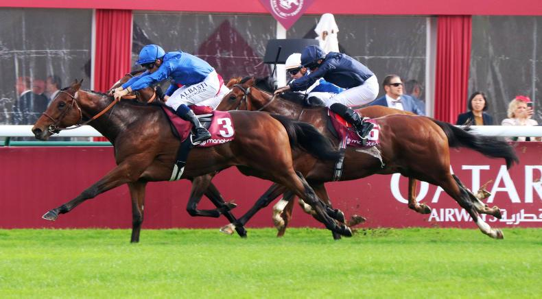 FRANCE: Fabre the Victor again