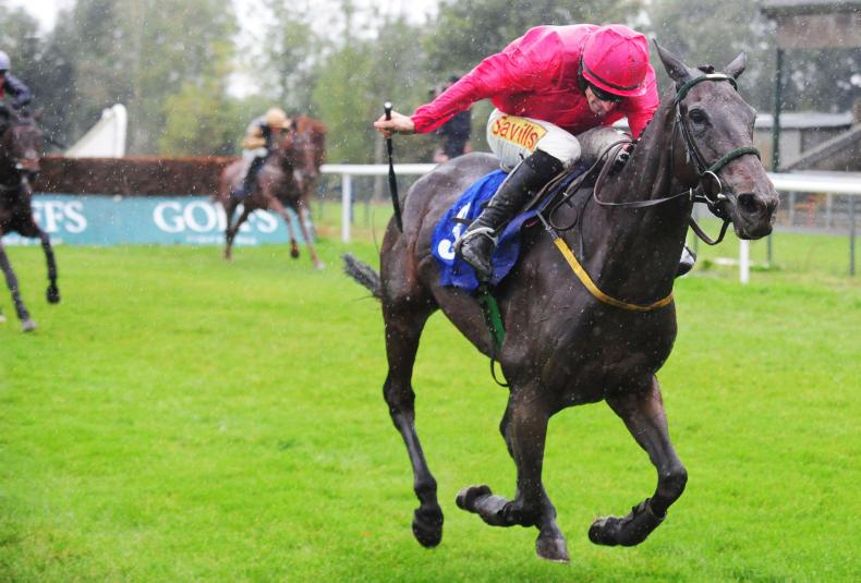 GOWRAN SATURDAY: Fresh Falcon gives Meade Grade Glory