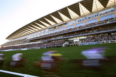 'Inner course' option for Ascot on Champions Day