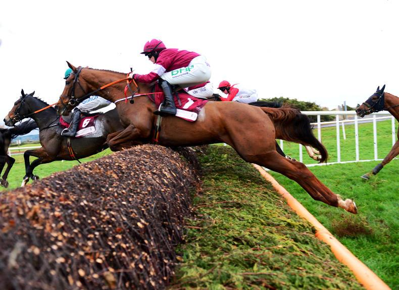 NEWS: Gigginstown go with the Flos at Punchestown