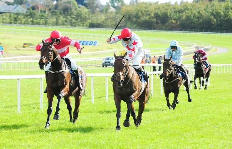 SIMON ROWLANDS: Thyme Hill could rise high this winter