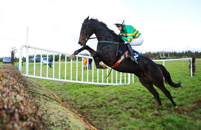 LOUGHREA SUNDAY: Edwulf on point for flags return