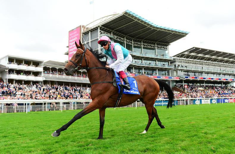 Enable to stay in training in 2020