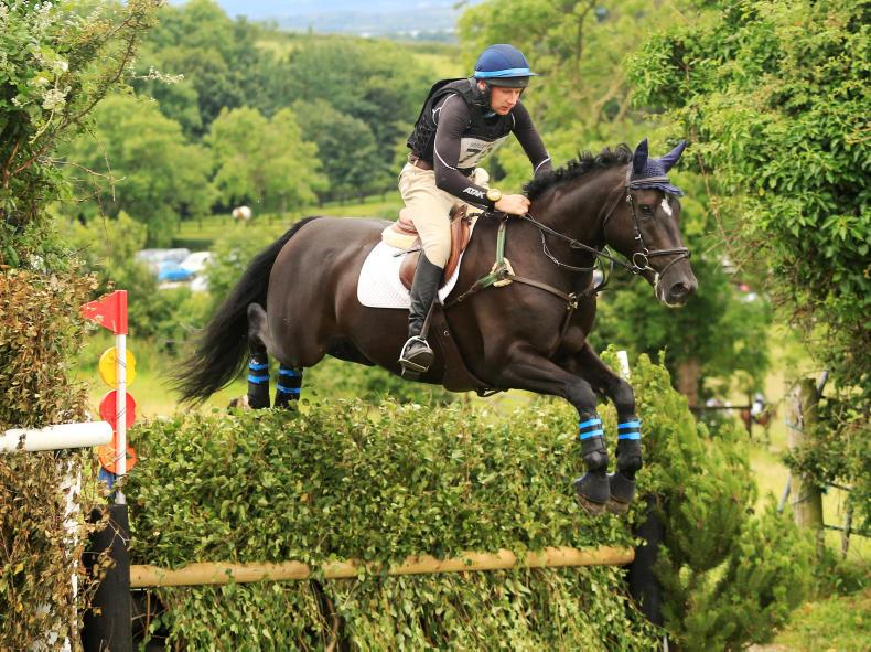 AMATEUR EVENTING: Fox makes winning debut in eventing