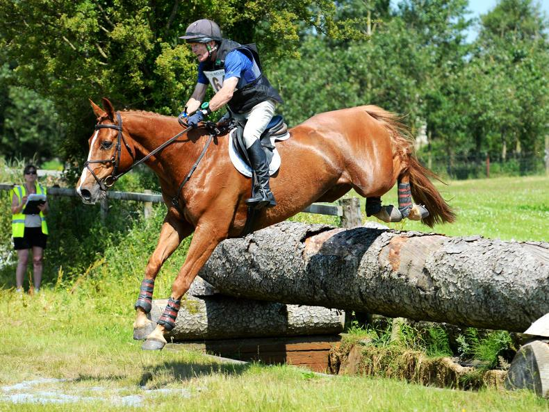 AMATEUR EVENTING: Rupert is a Diamond for Collins