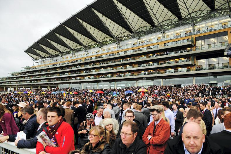 Ascot confirm three races switch to inner Flat course