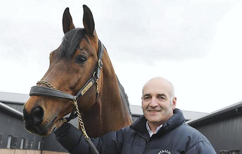 "HORSE SENSE: ""Small steps make a big difference"" – Tullis Matson"