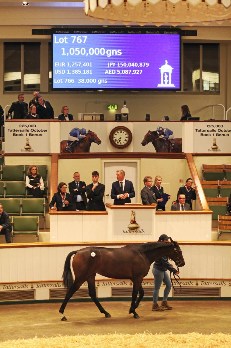 Sheikh Hamdan buys 51 yearlings including record-breaking millionaire filly