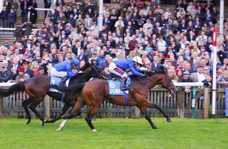 PEDIGREE ANALYSIS: Another potential classic star for New Approach
