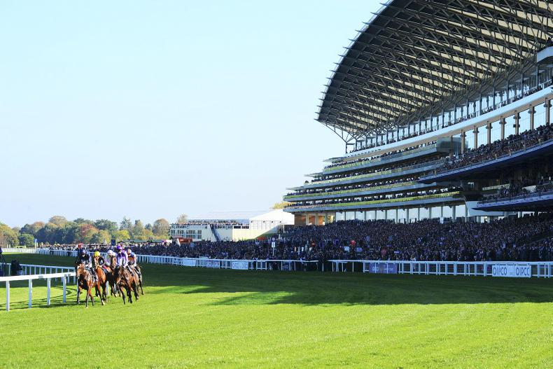 RACING CENTRAL: Stamina at a premium for Champions Day