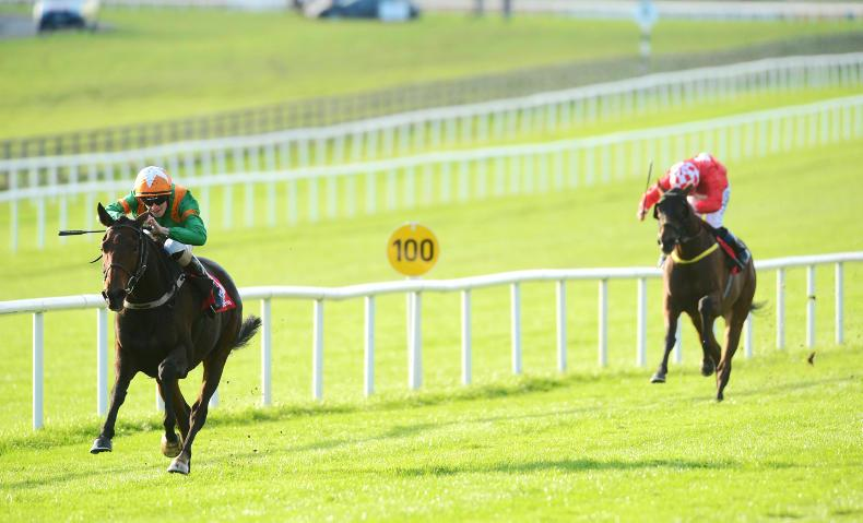 CURRAGH SUNDAY: No Illusion about Mullins' Cesarewitch double