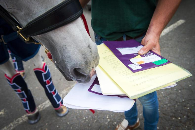 HSI SEMINAR: Concern over the welfare of horses in transit