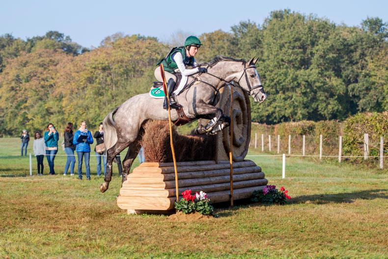 NEWS: Abbott and Jewelent best of the Irish at Le Lion