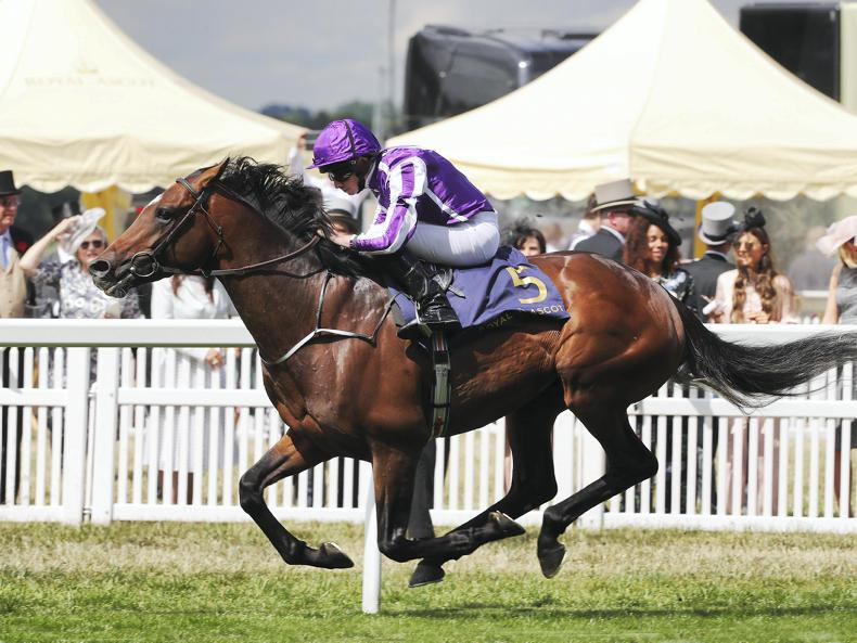 BRITISH PREVIEW: Form an orderly Kew for Ascot bets