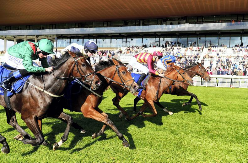 RYAN McELLIGOTT: Positive end with Curragh free entry