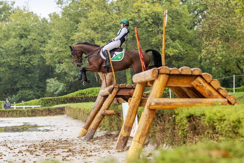 EVENTING: Two Irish Sport Horses make Championships podium at Le Lion d'Angers