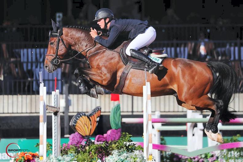 SHOW JUMPING:  Allen on top form at Tryon