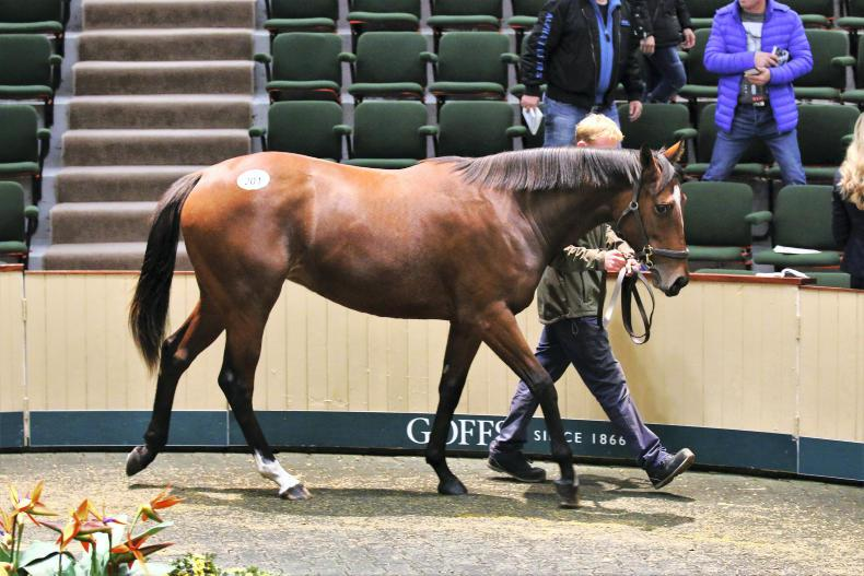 SALES: Overseas purchasers drive up clearance rate at Goffs