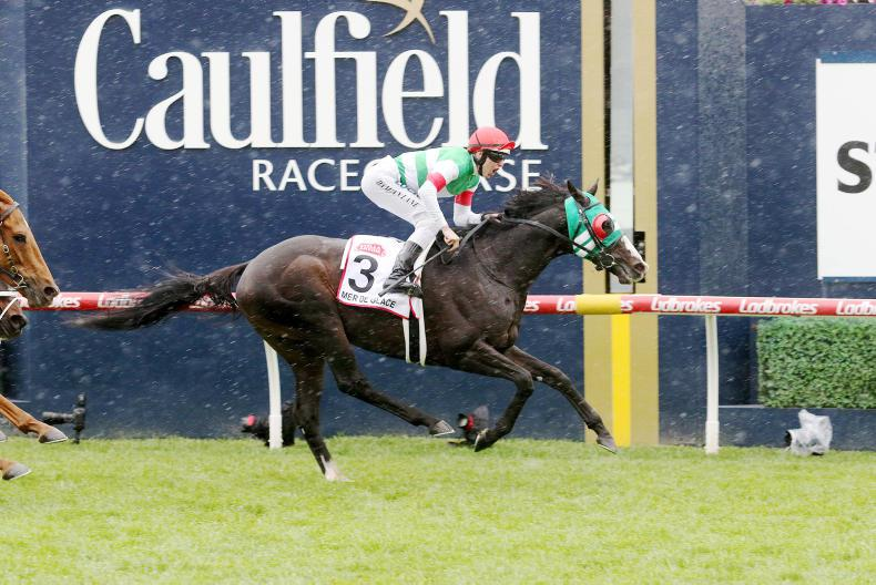 AUSTRALIA: Glory for Glace as Caulfield Cup goes to Japan