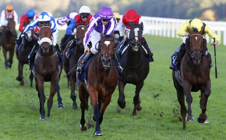 BRITIAN:  Magical hailed the ultimate racehorse