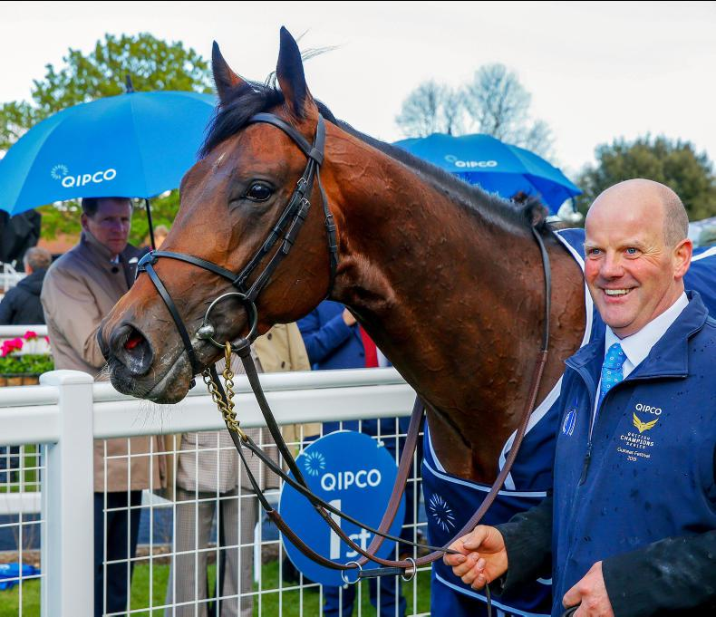 NEWS: Magna Grecia to stand at Coolmore