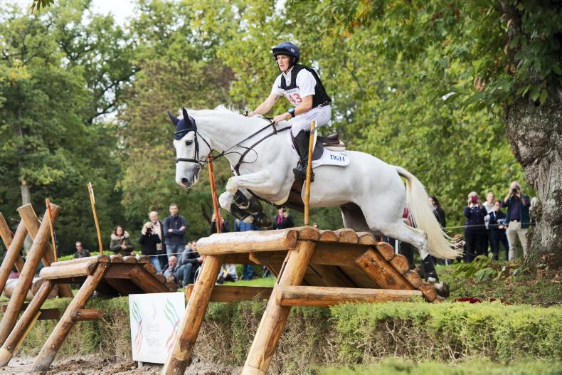EVENTING: Two Irish-breds win Le Lion medals