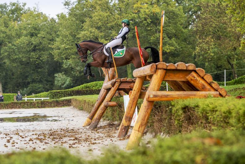 EVENTING: ISH runner-up in studbook competition