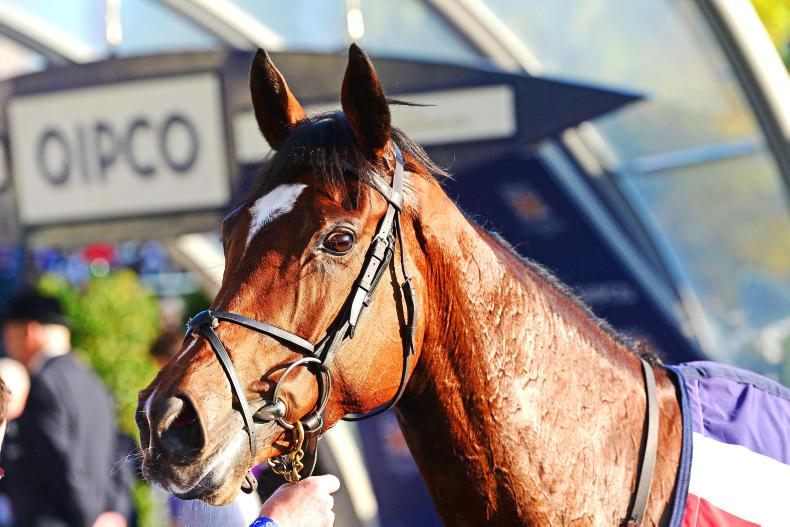 DONN McCLEAN: Magical year for tough filly