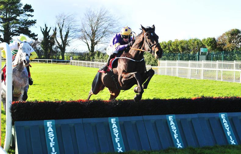 GALWAY SATURDAY: Nolan's charge puts up an Exhibition on jumps debut