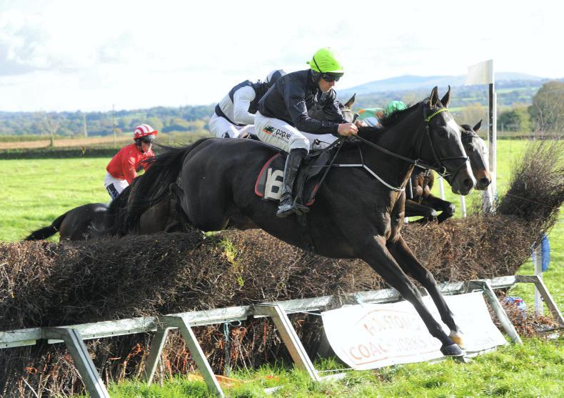 LOUGHANMORE SATURDAY: O'Neill and Bowe sparkle with double