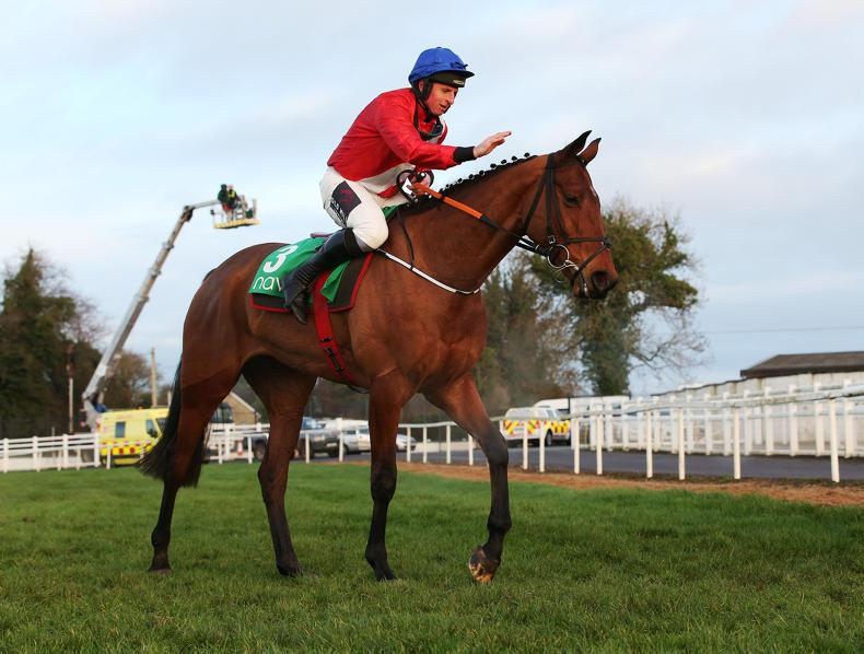 DOWN ROYAL PREVIEW: All eyes on Envoi
