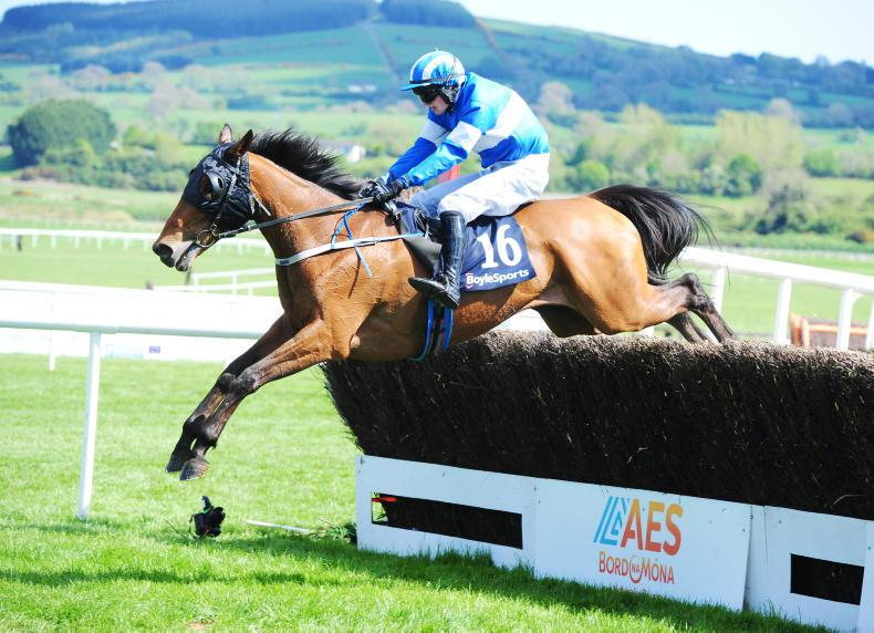 CORK SUNDAY PREVIEW: Cloudy the clear choice
