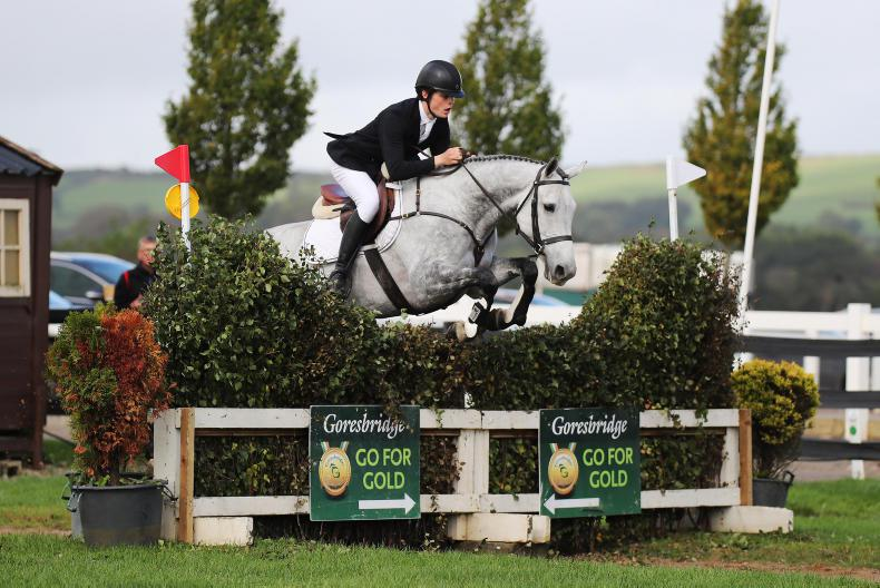 GO FOR GOLD PREVIEW: Only 11 mares attempting to 'Go For Gold'