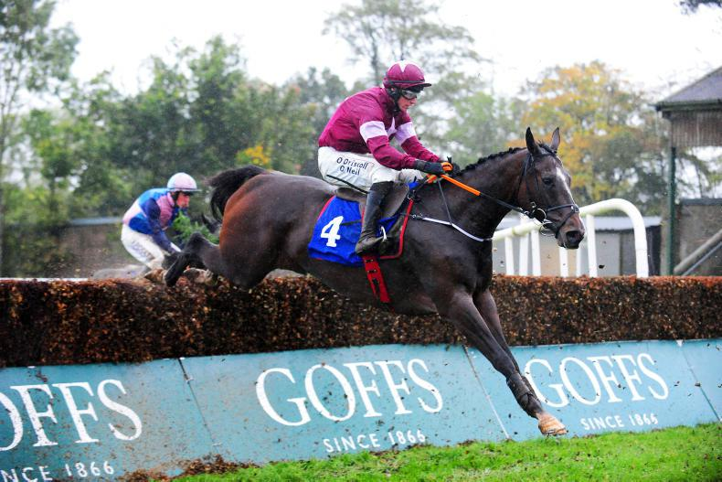 DONN McCLEAN: Exciting times for Elliott's staying novice chasers