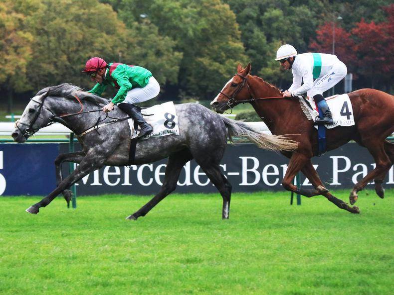 FRANCE: Tough Technician is the Royal-Oak master