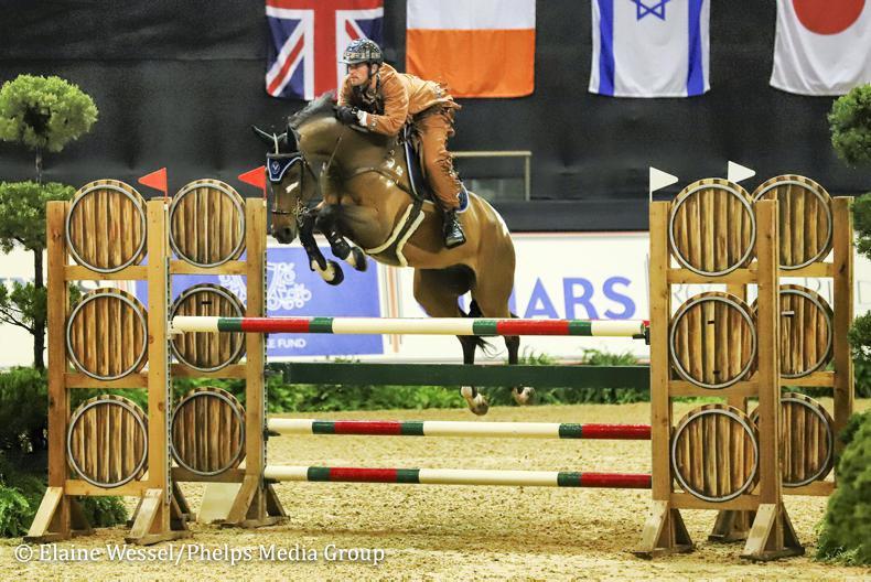 NEWS: Irish show jumpers winning worldwide