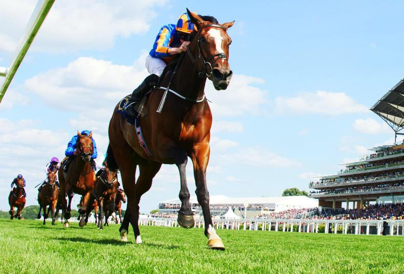 MELBOURNE CUP: Assessing the European challenge - who is weighted to win?
