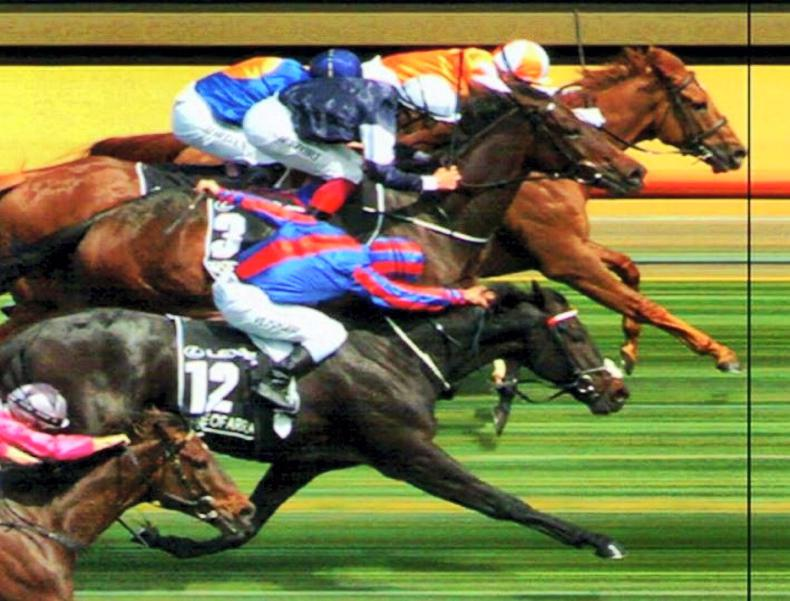 Vow And Declare grabs Melbourne Cup in thrilling finish