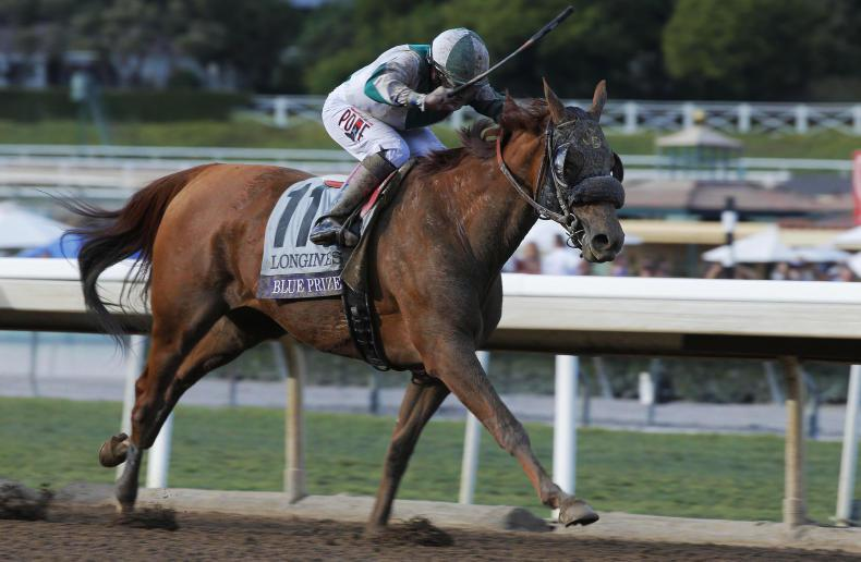 FASIG-TIPTON NOVEMBER SALE: Breeders' Cup winners sold for $5 million