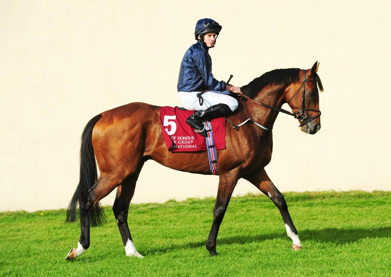 Flag Of Honour to stand at National Stud in Newmarket