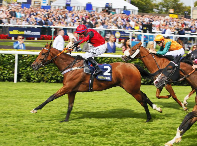 TATTERSALLS ASCOT NOVEMBER SALE: Oxted's dam heads a lively trade in Ascot