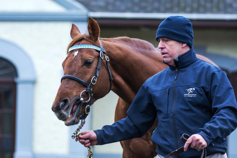 NEWS IN BRIEF: Fees announced for Derrinstown and Rathasker stallions