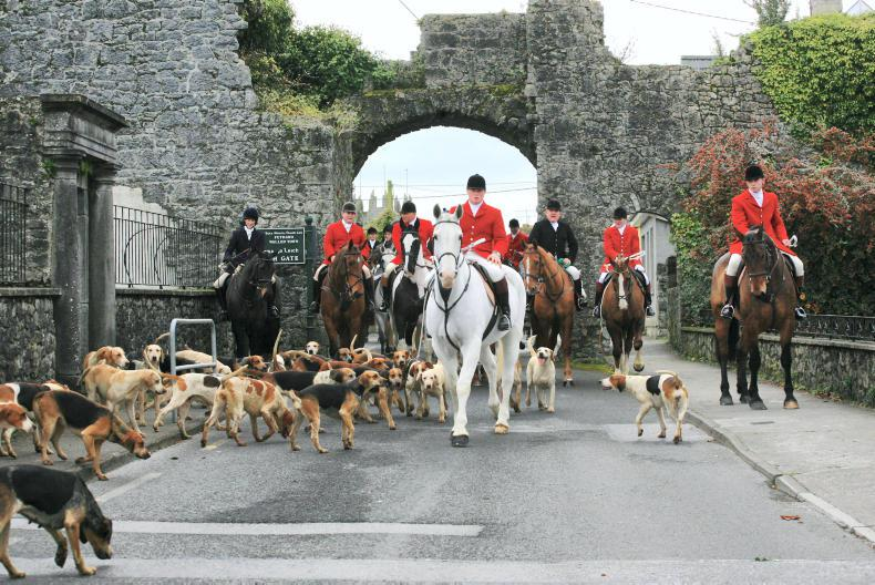 HUNTING: Special day out with the gallant Tipps