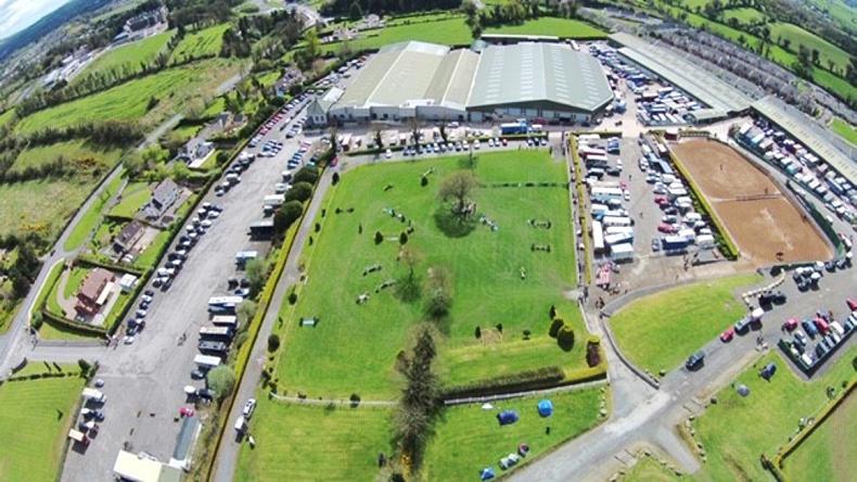 NEWS:  Cavan International Show in full swing