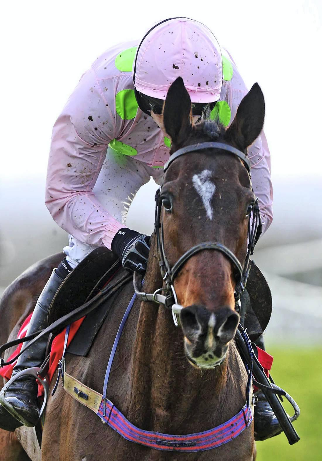 Walk In The Park for rising star Douvan