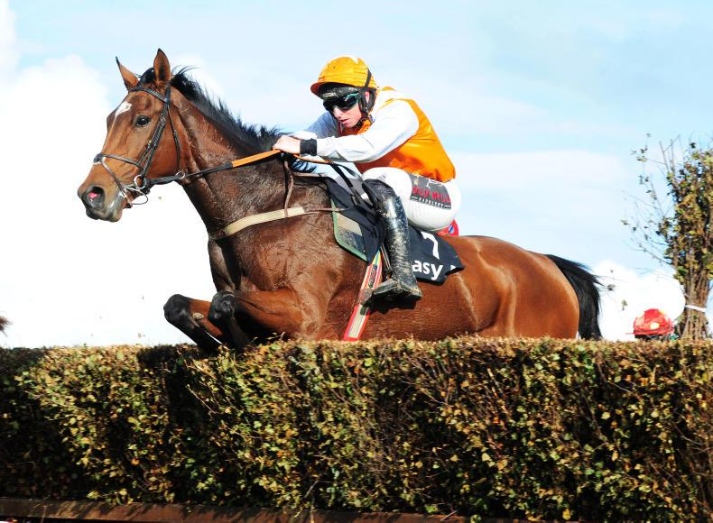 TATTERSALLS CHELTENHAM NOVEMBER SALE: Proven talent at Cheltenham