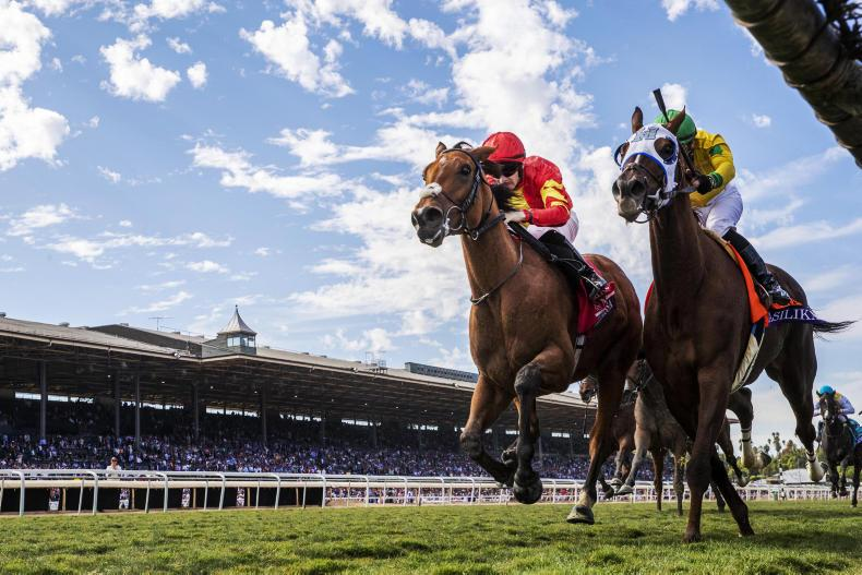 BREEDERS' CUP: Iridessa the irresistible