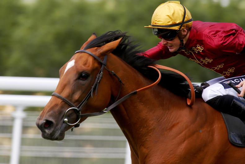 TATTERSALLS DECEMBER FOAL SALE: Strong catalogue of well-related foals