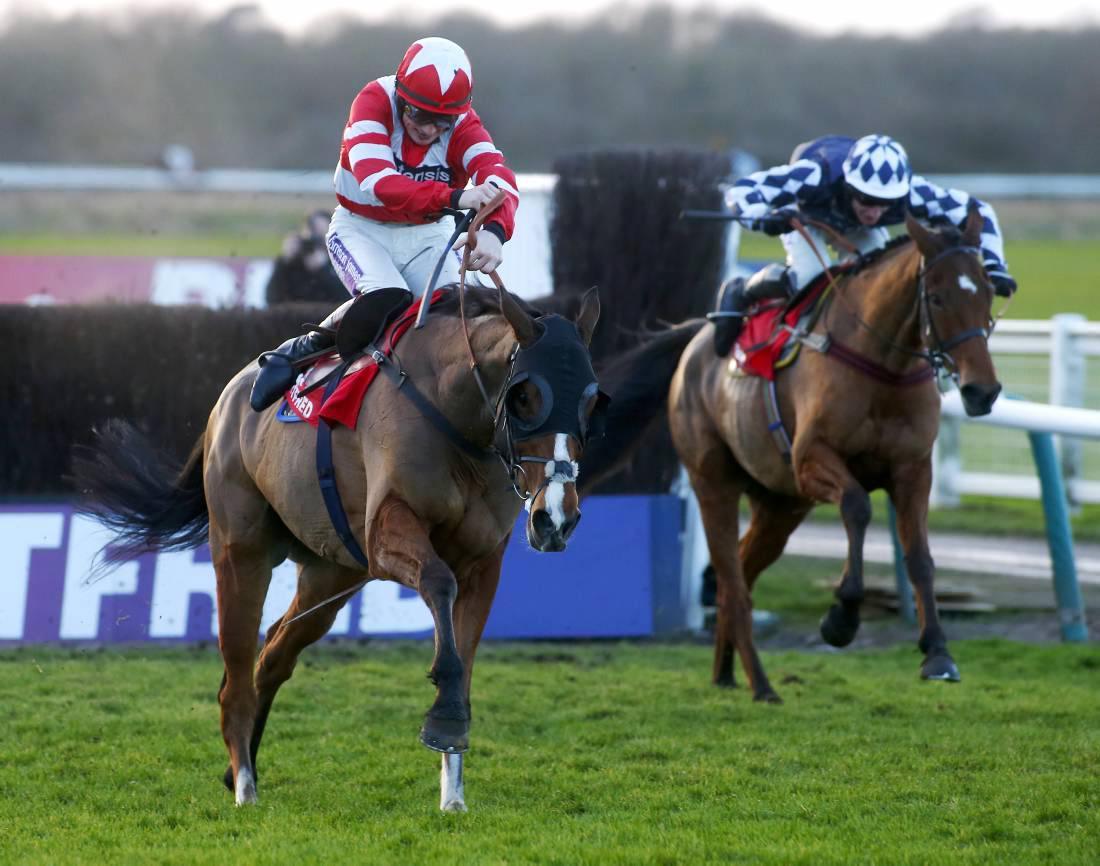 BRITAIN:  Hawkes Point's stamina sees him through